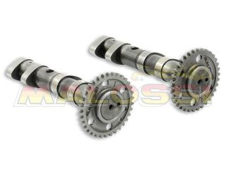 129606:Double POWER CAM camshaft