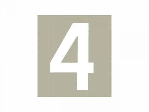 FAST GUY STUFF Hallman bib (White) # 4 (3pcs)