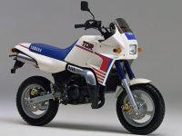 ヤマハ TDR50のバイク買取上限価格