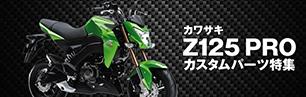 Z125PRO
