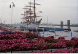 富山新港-長野まで