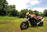BMW Motorrad F 800 R – トータルでの扱い易さが際立つ