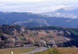 寒風山パノラマライン