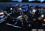 ハーレーダビッドソン 2011 NEW MODELS