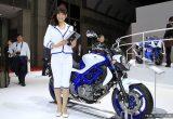 東京モーターショー2011 コンパニオンチェック Vol.1(96点)