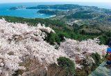 三陸復興国立公園[宮城県]