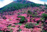 雲仙天草国立公園[長崎県]