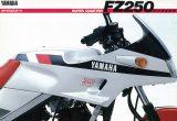 ヤマハ FZ250 フェーザー(1985)