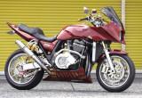 INSANITY SPL. ZRX1200R(カワサキ ZRX1200R)