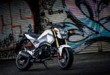 ホンダ グロム(2016-) – 125ccスポーツモデル人気を牽引する本格的ネイキッド!