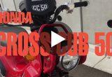 【エンジンサウンドチェック】ホンダ CROSS CUB 50