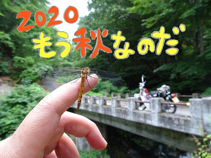 ゆるカブ第百三十六回「羽カブ号で秘湯へGO!」メイン画像