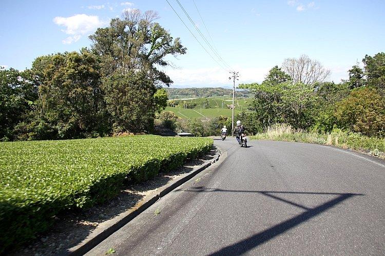 お茶屋さんの先導でお茶畑の中の裏道を走る。さすが地元の人だけあって、交通量の少ない、いい道を知ってますね!!