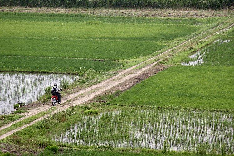 霞ヶ浦の周囲は昔から温暖で肥沃な土地。美しい田園風景に思わず寄り道、こんな場所でもクロスカブは心強いですね