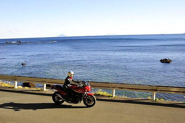交通量の多い国道135号線から少し入ると、海沿いの道が現れます。下田市白浜はアロエの生産が盛んなんです。この道も1月頃は赤いアロエの花で満開になります。
