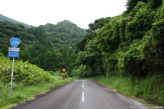 国道226号(鹿児島県南さつま市~鹿児島市)の画像