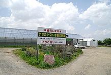 道の駅の横にはいちご狩りができるビニールハウスは併設されている。また、その他季節に応じた農業体験も行っているのも特徴だ。