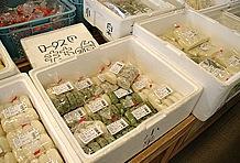 物販コーナーは地元農家の協力による野菜販売がメインだが、その中で注目したいのは餅。米どころだけあって、つきたてのもちが処狭しと並べられている。