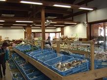 地元の朝採り野菜の種類の多さには驚きです。季節の旬の野菜が数多く揃い、地元の人を始め訪れる人で賑わっています。