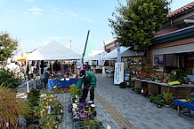 建物前では、秩父の名産品の市場が開かれていました。当日は「木が香る秩父フェスティバル」というイベントでした。時期により催し物は違うようですが、イベントに当たる確率は高いようです。