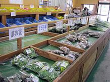 地元農産物販売のふれあい市場では、農産物としては珍しい菜の花やタラの芽の山菜やとろろ芋が販売されています。