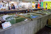 物産販売館内の中央にある水槽では大きな伊勢エビ、さざえ、はまぐりが入っています。周囲のお店では干物や魚介類の加工品が販売されています。