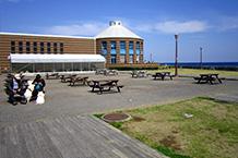 物産販売館の海側は中庭広場で、海を眺めながらここで休憩できます。奥に見えるのがレストラン棟で、その手前のビニールハウスが海鮮バーベキューコーナーです。