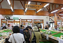 館内のほとんどのスペースを占める「生産物直売コーナー」には、地元で採れた新鮮な野菜や山菜が所狭しと並べられている。またそれを求める客も多く、まるで八百屋さん。休憩に立ち寄る場所ではない。