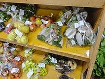 季節によっていろんな物が並びます。訪問した9月中旬はアケビ、ミョウガがたくさんありました。またスーパーの袋に入った苔が販売されており「あらこれはいい苔だわぁ~」と2袋購入されている方もいました。