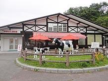 みるく工房遊牧館では牛が出迎えてくれます。ガラス越しに工場の様子が見られ、作業工程を見学できます。テーブルが置いてあり飲むヨーグルトやアイスクリームをその場で食することができます。