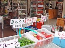 夏はやっぱりこれでしょう!採れたての冷やしトマト、プラム、スイカなど。おいしい空気を吸いながらのフルーツの味は格別。新鮮野菜やソフトクリームの外売店は4月下旬~11月中旬限定。