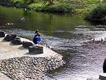 道の駅裏側の河川敷には親水公園が整備されています。夏場は水遊びができ、アヒルが泳いでいて餌欲しさに近寄ってきます。