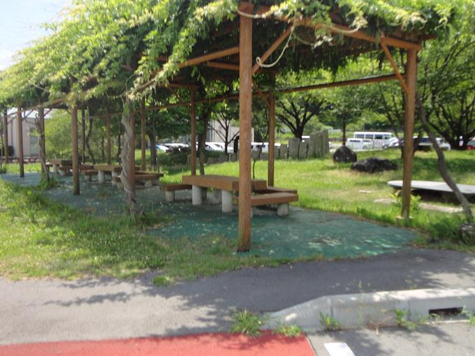 付近には公園もあり藤棚の下で気持ちよく過ごせそうです。また駅隣には温泉アクティブセンターなどの施設があり、プールもありました。