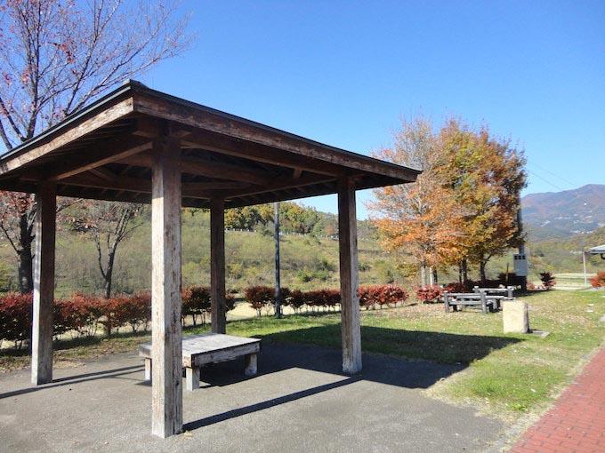 空気が澄んでいます。春には緑葉、秋には紅葉と季節ごとに美しい景色が見られることでしょう。自然の偉大さをグッと感じさせてくれます。
