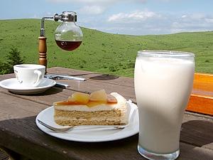 コーヒーは霧ケ峰の水、ミルクティーもアイスで飲めます。気分爽快なティータイムいかがですか? 紅茶のアップルケーキお薦めです。