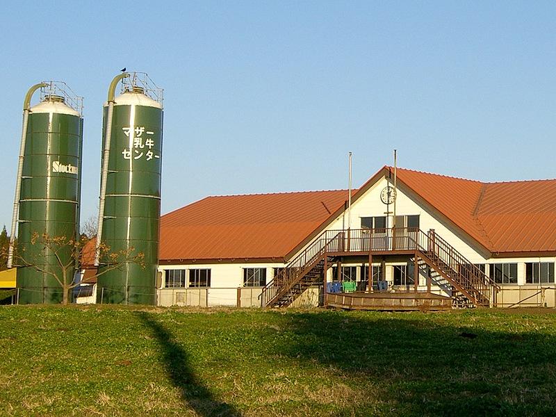 マザー牧場