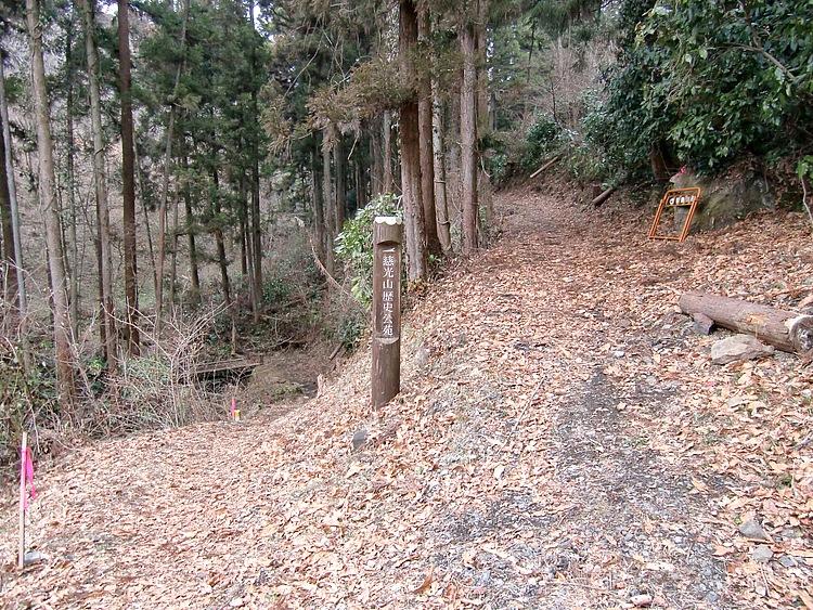 この「桃山線」は、熊野古道の荷坂峠に似て雰囲気がよかった。慈光山方面に抜ける分岐もあるが、遊歩道のようだ