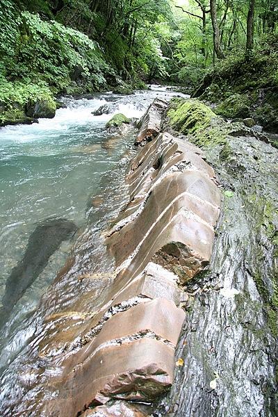 国の天然記念物「横川の蛇石」。横川をのぞくと、一瞬びっくり。清流に長々と横たわる巨大な岩脈。白いシマ模様が蛇腹を連想させ、水が胴体を包み、テカリ加減がまた気持ち悪い。大蛇の迫力ありで、今にも動き出しそう