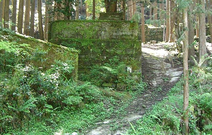 戦後は木材を切り出す人々が住んでいたという苔むした集落や、木浦木小中学校跡地もある丸瀬林道。探検気分を味わえる!だけど、ダム建設によって沈んでしまうとか…