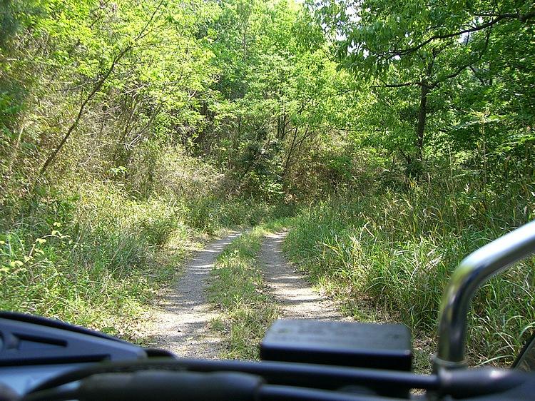 阿蘇外輪山の南西側は生い茂る緑の中を走る。ガレた路面もあり走り応えがある