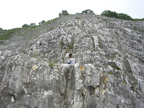 あぶくま洞は8000万年という時間をかけて、地下水によって溶かされ創られた神秘の鍾乳洞。でね、時間がない人もぜひ駐車場までは行ってみて! 鍾乳洞の元となる石灰岩の露頭はみごとだよ