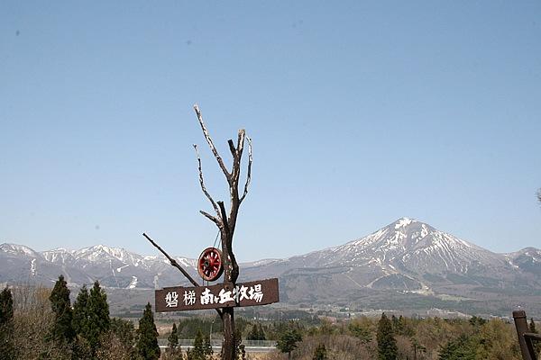 磐梯山の絶景を望む「南が丘牧場」。広い高原には孔雀、馬、ロバなど、動物のゆったりとした雰囲気を楽しめる。食堂と売店もあり入場無料