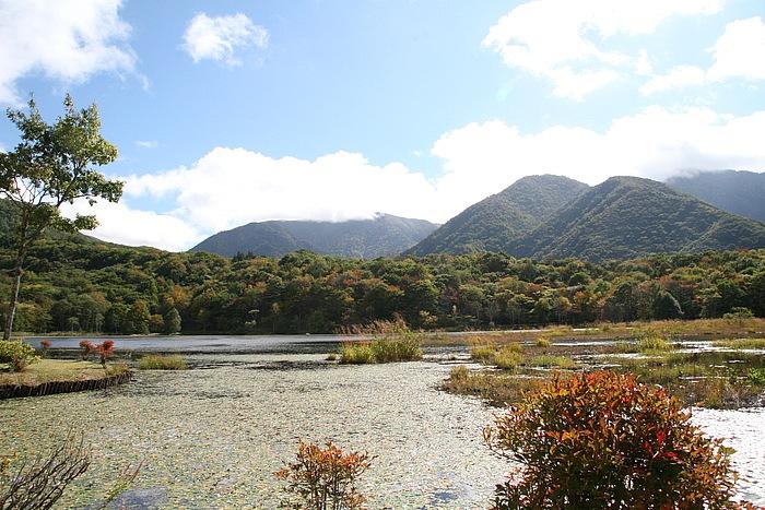 「観音沼」は「観音沼森林公園」の中にある景勝地。沼に浮島が浮かび、桜、もみじなどが自生。新緑と紅葉の時期には沼の周遊道のどこからも美しい風景を見ることができる。国道289号に「観音沼森林公園」の案内標識有り