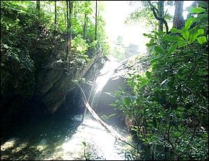 本宮山県立自然公園にある「くらがり渓谷」は、カエデやケヤキに囲まれ、秋には「紅葉まつり」も開催される景勝地である。渓谷には、不動の滝、さるとび岩、かえで並木など、「くらがり八景」というスポットもある  width=